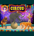 big top circus show tamer animals and gymnast vector image vector image