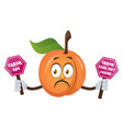 apricot holding 404 error sign on white vector image