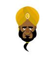 indian face in turban happy emoji head man of vector image vector image