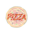 pizza illistration vector image