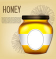 realistic 3d bank of honey retro vector image