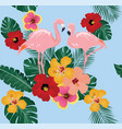 floral flamingo background vector image vector image