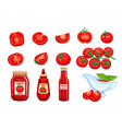 set red tomato vegetables sauce vector image vector image