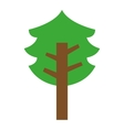 tree plant eco icon vector image