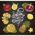 Vintage Set of Tropical Fruit on the Chalkboard vector image