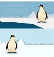 Antarctic banner2