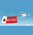 delivery drone carrying a shopping sale vector image