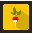 Fresh radish with leaves icon in flat style vector image vector image