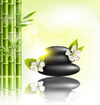 stack spa stones with cherry white flowers vector image vector image