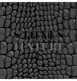 Stones texture vector image vector image