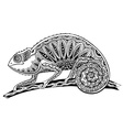 picture of black and white chameleon lizard in vector image