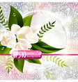 fresh green spring background with flowers vector image