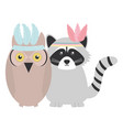 owl bird and raccoon with feathers hats bohemian vector image vector image
