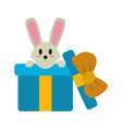 rabbit in gift box vector image vector image