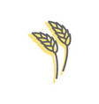 rye ear line icon wheat sign for production of vector image vector image