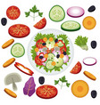 salad vegetables food healthy organic vector image vector image
