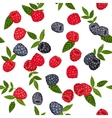 Seamless background blackberries and vector image