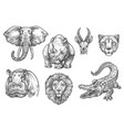 sketch zoo wild african animals icons vector image vector image