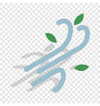 wind isometric icon vector image vector image