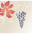 colored floral background with grape vector image