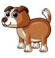 cute dog with happy face vector image vector image