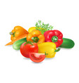 fresh realistic group of vegetables healthy food vector image