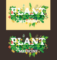 plant medicine beautiful logo vector image