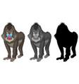 set of mandrill baboon character vector image vector image