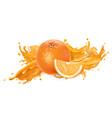 splash fruit juice and fresh orange vector image vector image