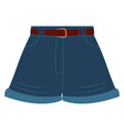 texas shorts on white background vector image vector image