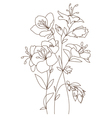 Spring Blooming Bouquet vector image