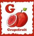 alphabet for kids with fruits healthy letter abc vector image