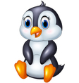 Cute cartoon animal penguin sitting isolated on wh vector image