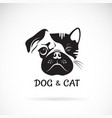 dog and cat face design on a white background pet vector image vector image