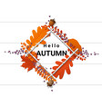 hello autumn with wreath on wooden board vector image