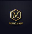 letter m logo premium design vector image