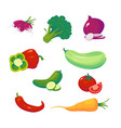 vegetables food vector image vector image