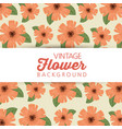 flowers with natual petals and leaves background vector image vector image