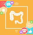 human organ - the large intestine vector image