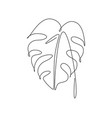 one continuous line drawing abstract tropical vector image