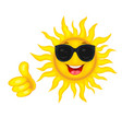 sun is in goggles vector image