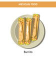 tasty burrito served on plate from mexican food vector image vector image