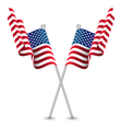 The USA Waving Flag vector image