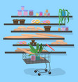 trolley in supermarket near shelves with vector image vector image
