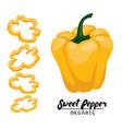 cartoon sweet pepper ripe yellow vegetable vector image