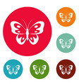 butterfly in wildlife icons circle set vector image