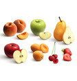 cutted fruits realistic set vector image vector image