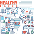 infographics elements concept healthy foods vector image vector image