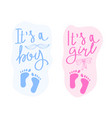 lettering it is a boy and it is a girl vector image vector image
