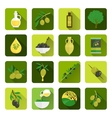 Olives icons flat vector image vector image